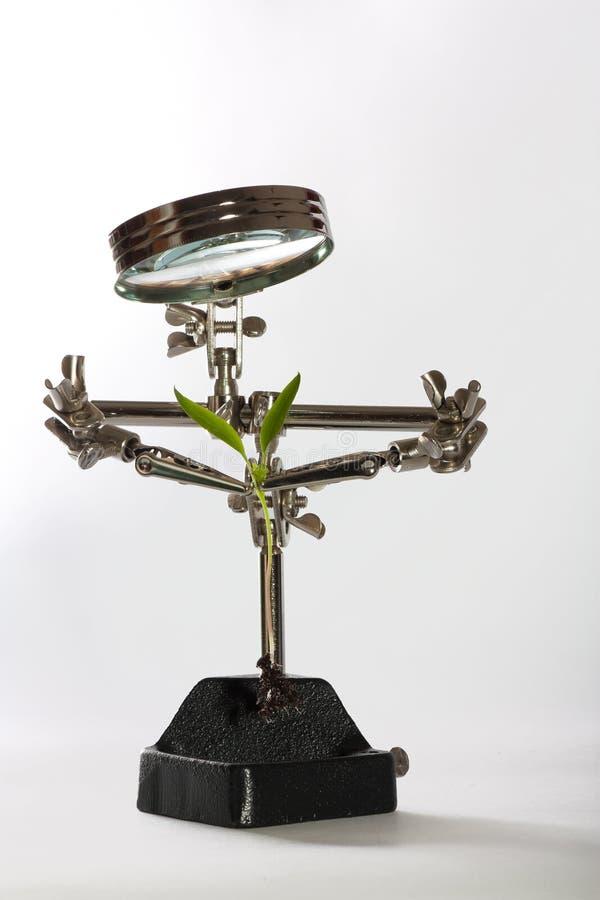 Eisenspielzeugroboter rettet Sprössling lizenzfreies stockbild