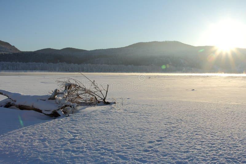 Eisiger Morgen des Winters auf der Flussbank stockfotografie