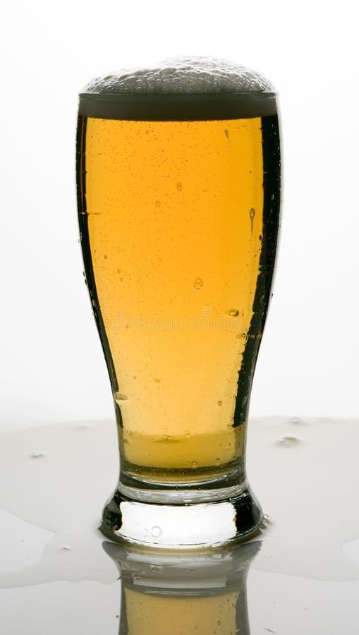 Eisiges kaltes eisiges Fassbier im Glas lizenzfreie stockbilder