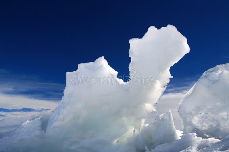 Eisiges Kamel stockfoto