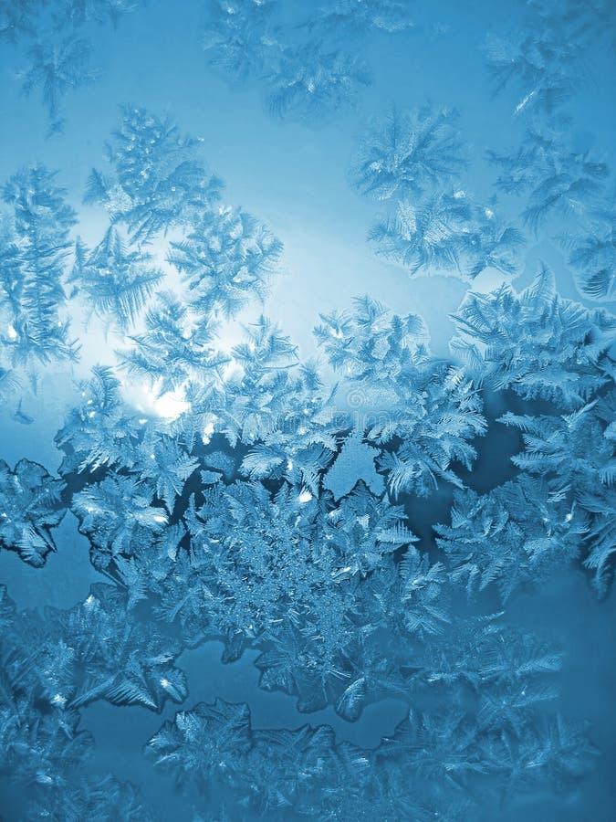 Eisiges natürliches Muster stockfoto