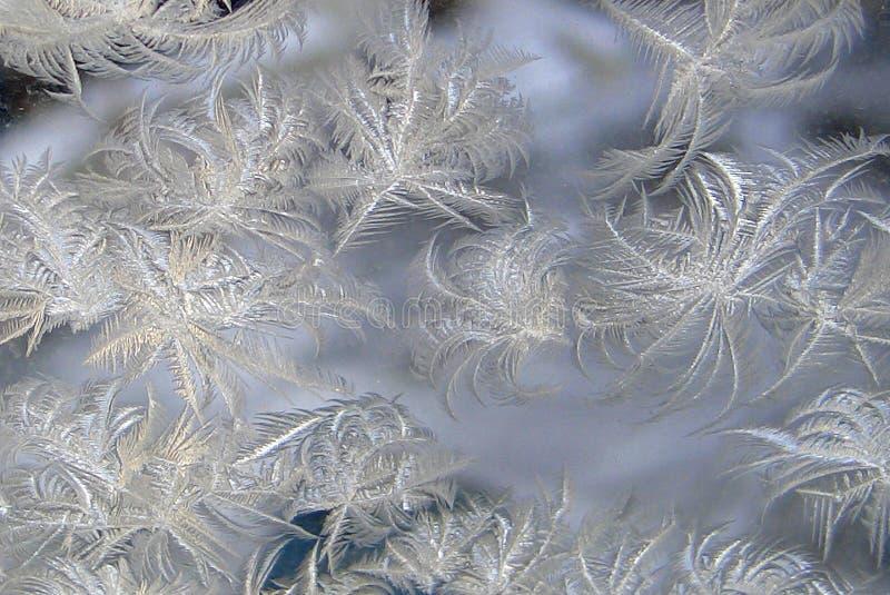 Eisiges natürliches Muster an einem Winterfenster stockbilder