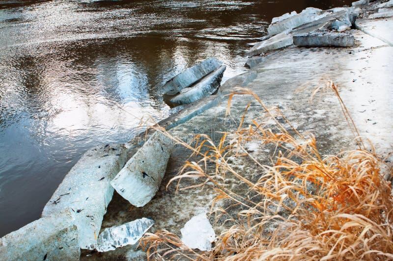 Eisscholle und -gras auf Riverbank lizenzfreies stockfoto