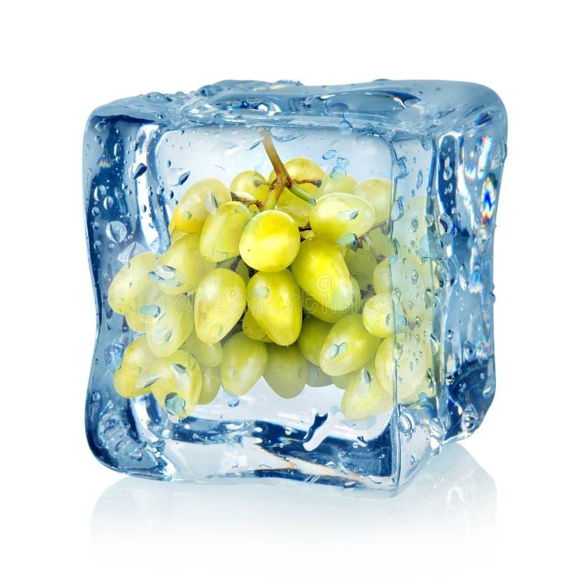 Eiswürfel und grüne Trauben lizenzfreie stockfotografie