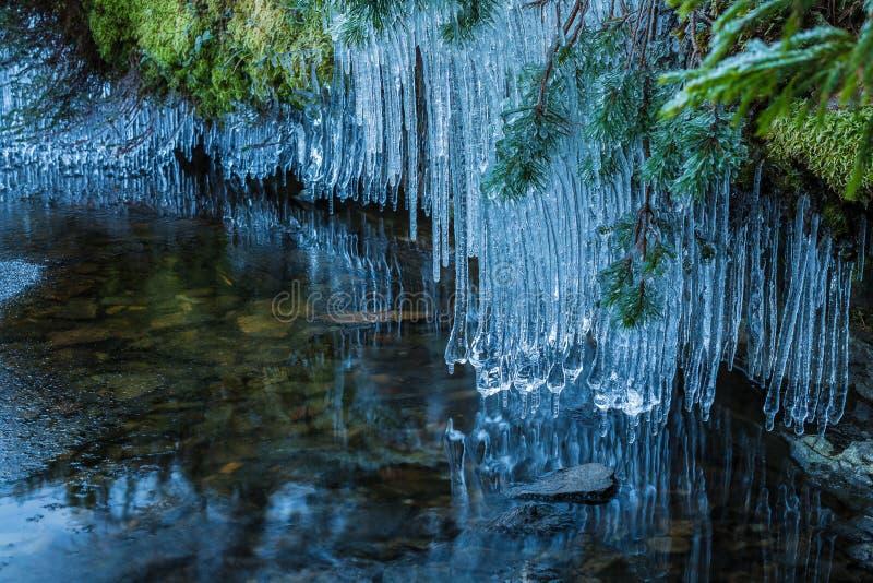 Eiszapfen über See lizenzfreie stockfotos