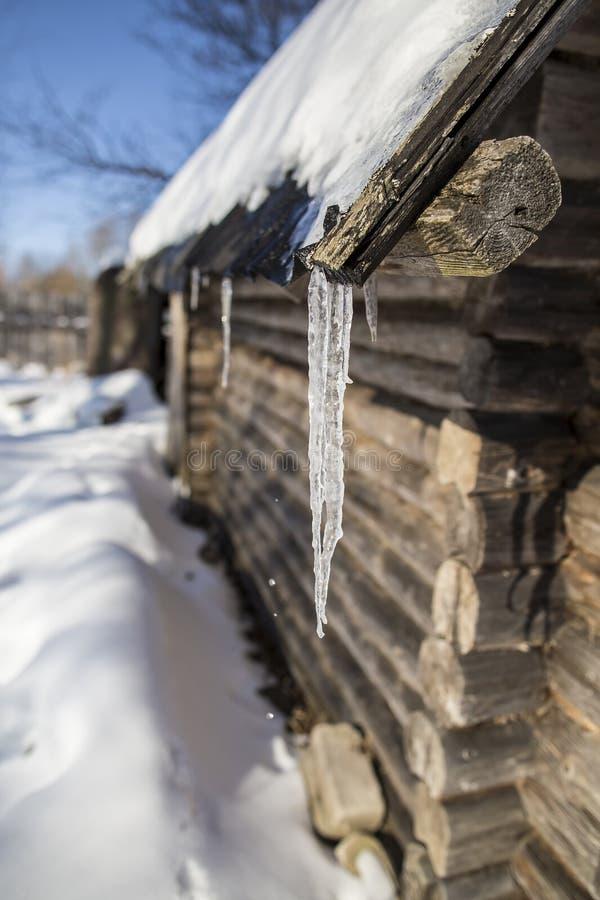 Eiszapfen, die vom Dach des alten Blockhauses und des Tropfens hängen lizenzfreies stockfoto