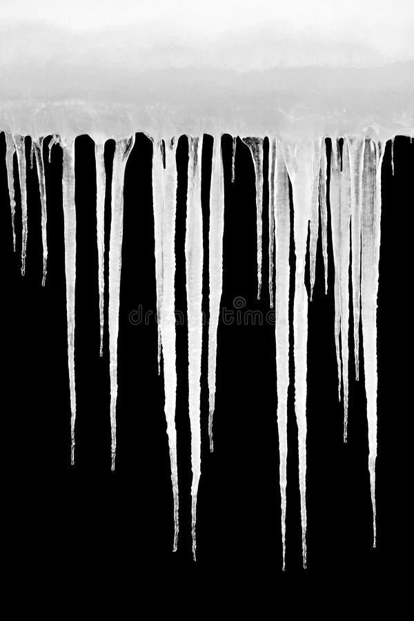 Eiszapfen getrennt auf Schwarzem stockbild