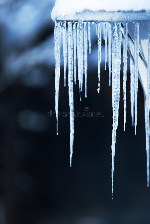 Eiszapfen im kalten Blaulichtglänzen stockfoto