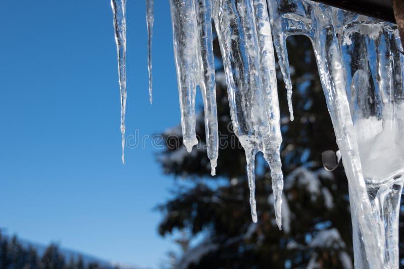 Eiszapfen, Magie der Natur, Jasna, niedriges Tatras, Slowakei stockfoto