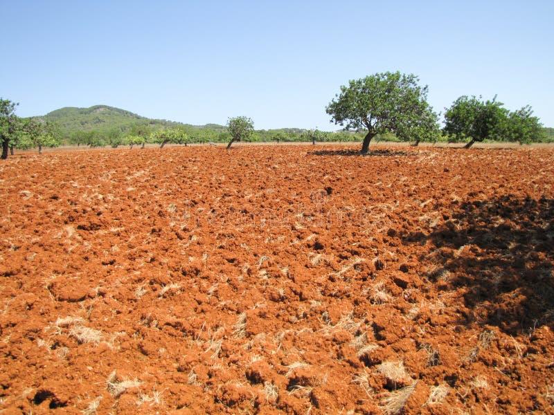 EIVISSA - IBIZA, Espanha, imagem de stock
