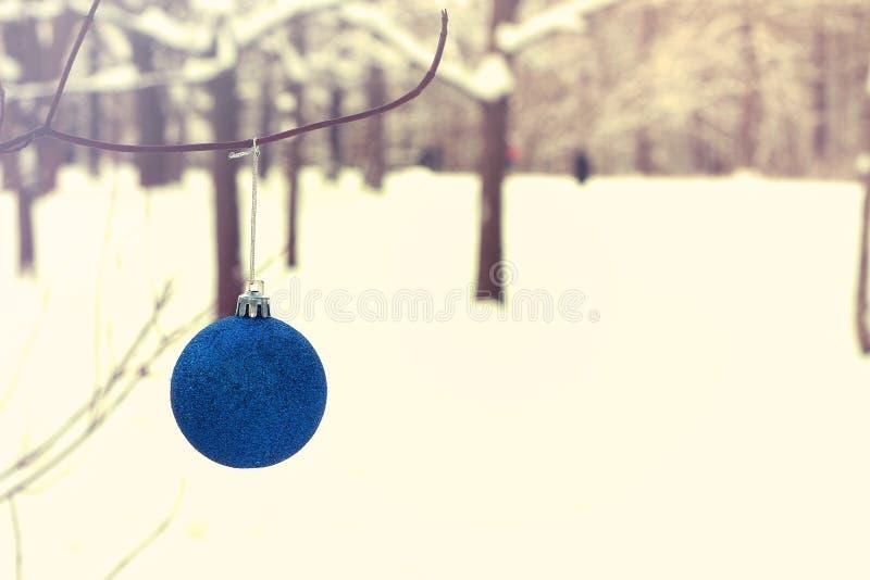Ejecución azul de la bola de la Navidad en rama fotografía de archivo libre de regalías