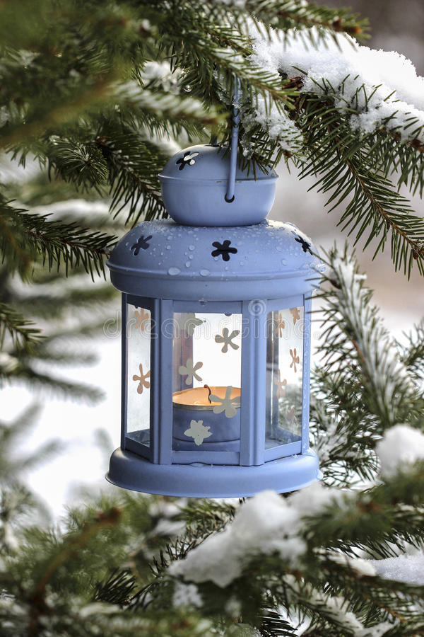 Ejecución azul de la linterna en rama del abeto Paisaje del invierno imágenes de archivo libres de regalías