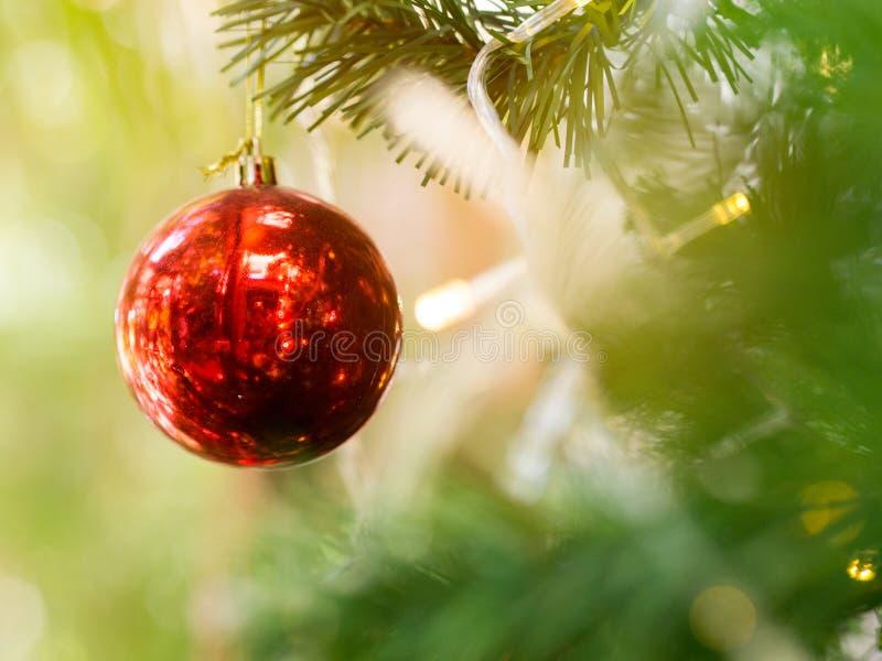 Ejecución brillante de la bola de la Navidad roja en árbol de pino foto de archivo libre de regalías