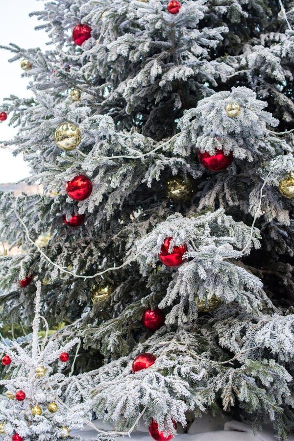 Ejecución de la bola del rojo y del oro en el árbol de navidad con nieve en invierno imagenes de archivo