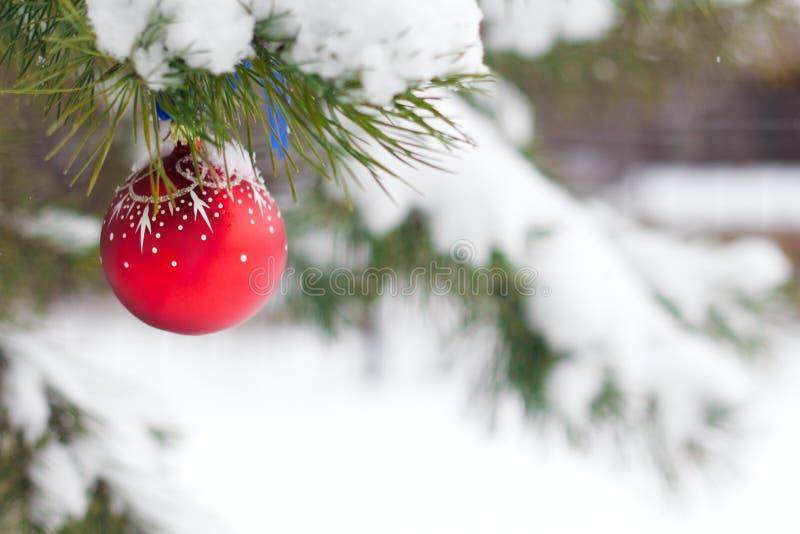 Ejecución de la bola de la Navidad en las ramas cubiertas con nieve imágenes de archivo libres de regalías