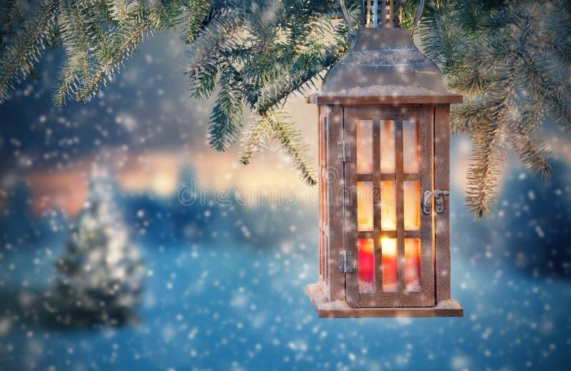 Ejecución de la linterna de la Navidad en ramas del abeto fotografía de archivo