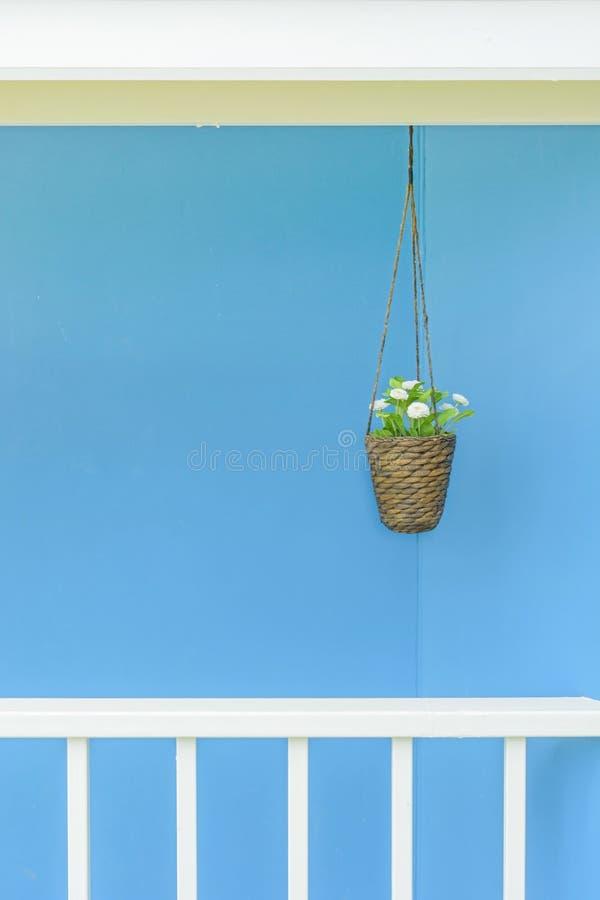 Ejecución de la maceta con la pared azul fotos de archivo libres de regalías