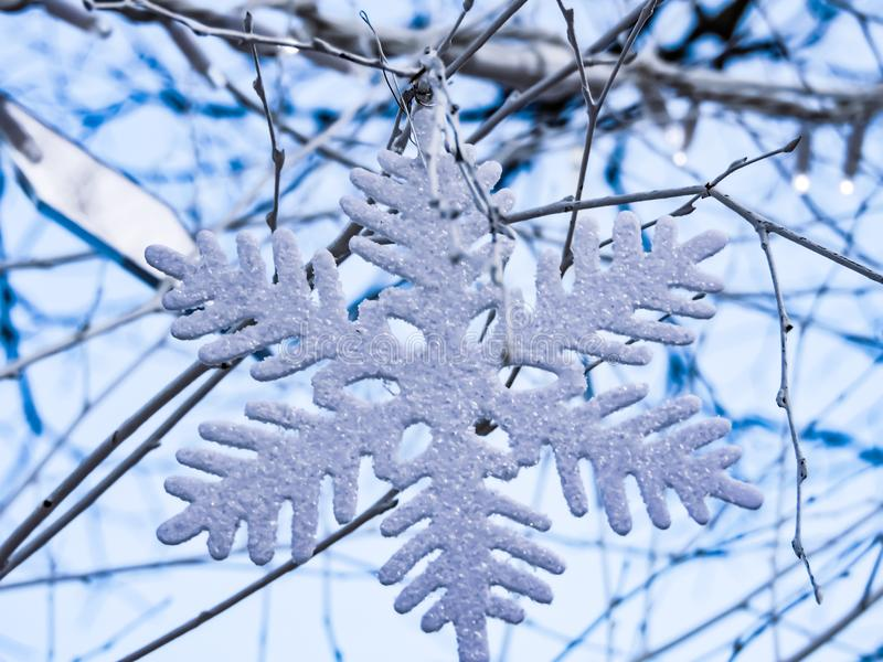Ejecución del copo de nieve en el árbol foto de archivo