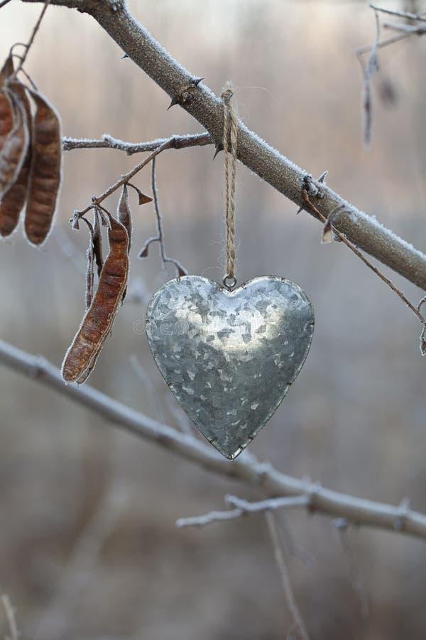Ejecución del corazón del metal de Autumn Twig foto de archivo libre de regalías