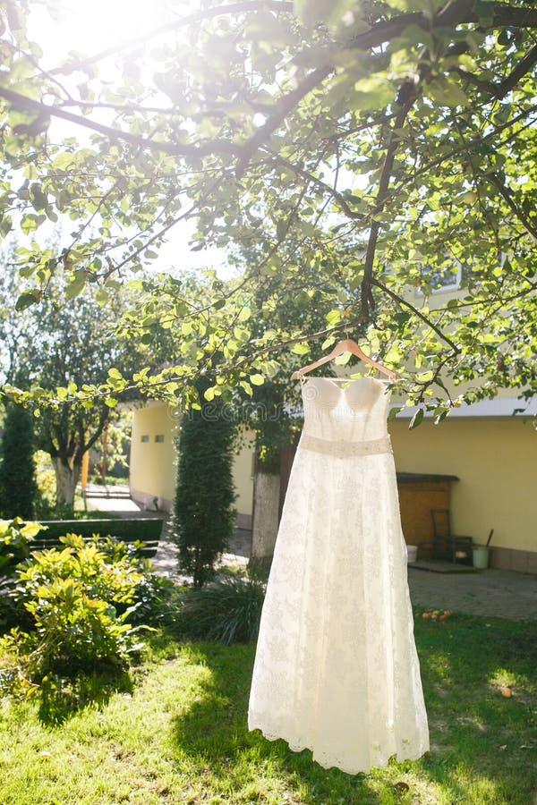 Ejecución hermosa del vestido de boda en un árbol fotos de archivo libres de regalías