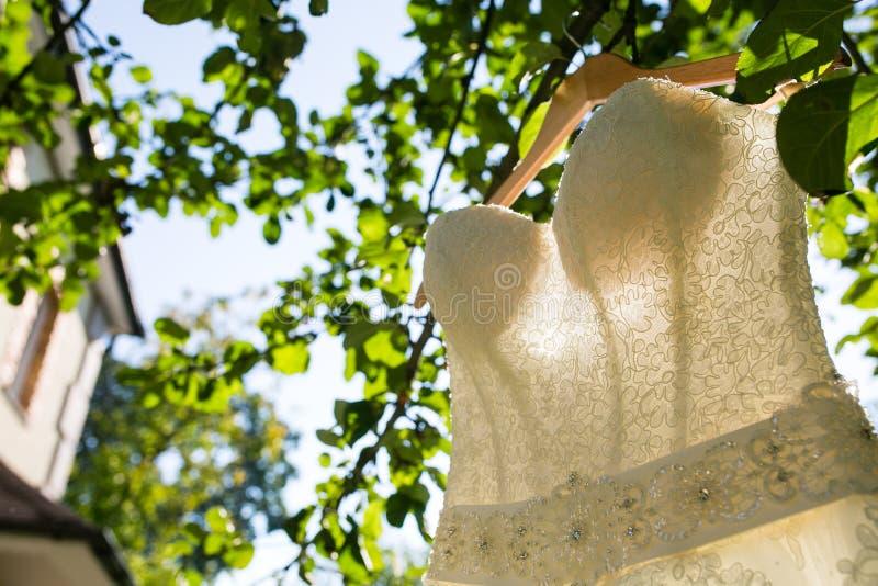 Ejecución hermosa del vestido de boda en un árbol fotos de archivo