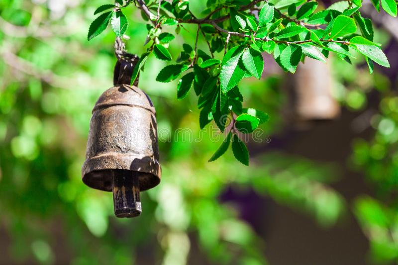 Ejecución ritual de la campana de la rama de árbol foto de archivo