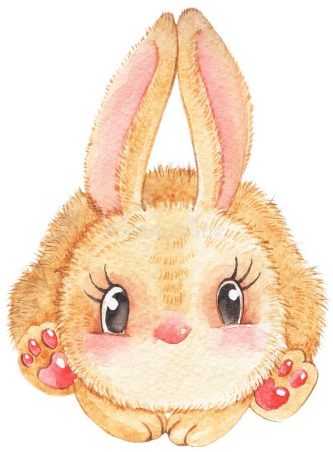 Ejemplo aislado liebres del conejo de la acuarela en el fondo blanco foto de archivo