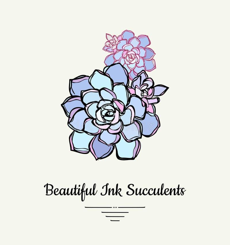 Ejemplo aislado vector suculento exhausto de la mano de Echeveria Logotipo suculento de la planta de la tinta moderna, icono, car libre illustration