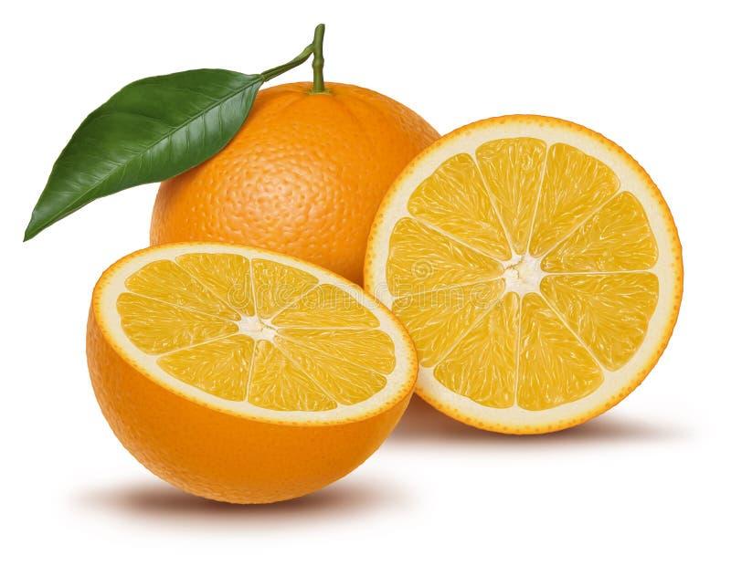 Ejemplo anaranjado de la fruta y de la hoja ilustración del vector