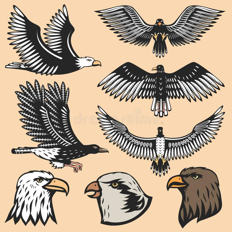 Ejemplo animal del vector de la silueta del vuelo de la historieta del pájaro de Eagle del gráfico del tatuaje ilustración del vector