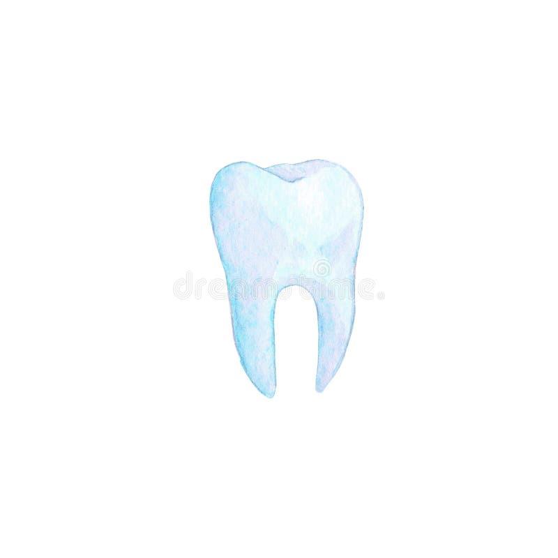 Ejemplo azul del diente de la acuarela fotos de archivo