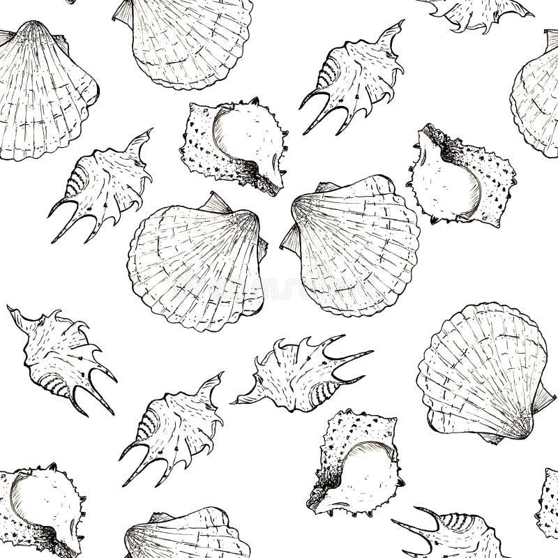 Ejemplo blanco y negro del bosquejo de conchas marinas en el fondo blanco Modelo incons?til libre illustration