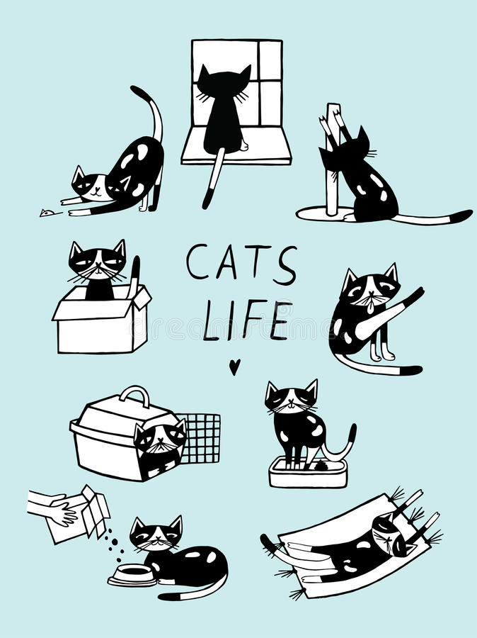 Ejemplo cómico del garabato de la vida de los gatos Gatito dibujado mano en diversas posturas ilustración del vector