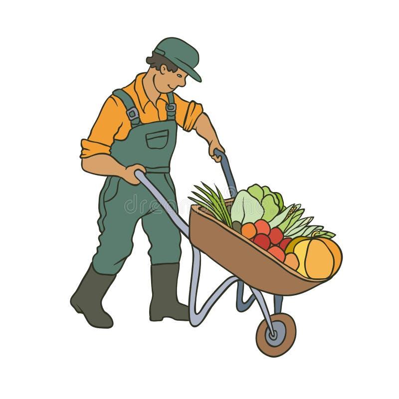 Ejemplo coloreado bosquejo del vector del granjero Hombre con las verduras del carro Cosecha que cultiva un huerto del otoño el c stock de ilustración