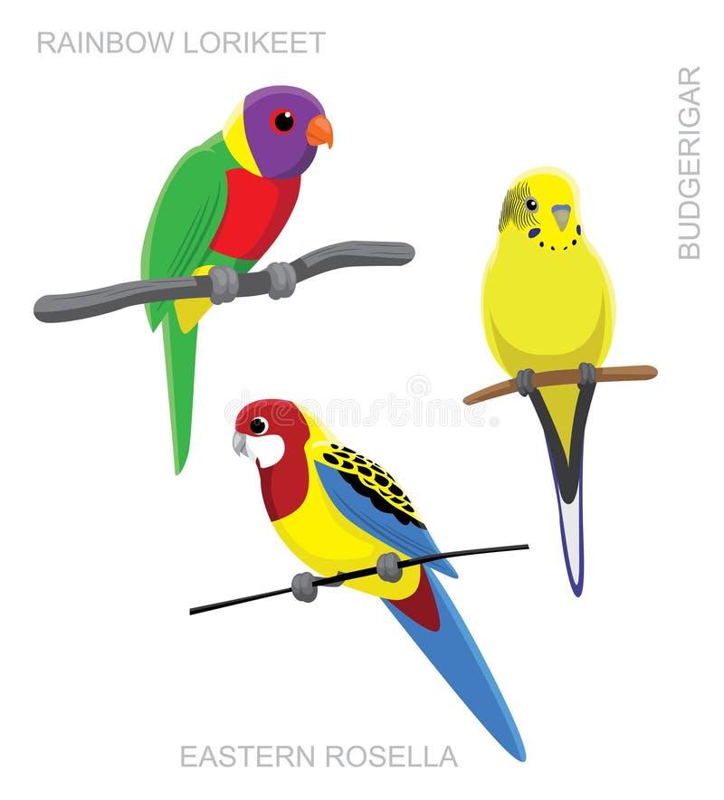 Ejemplo colorido australiano del vector de la historieta del loro stock de ilustración