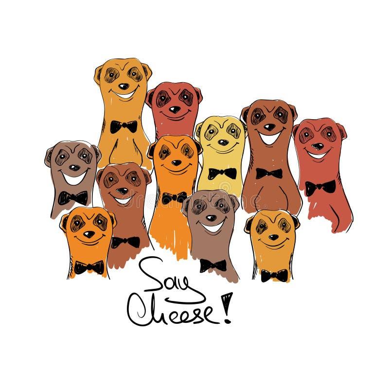 Ejemplo colorido con el grupo de Smiliing Meerkats stock de ilustración