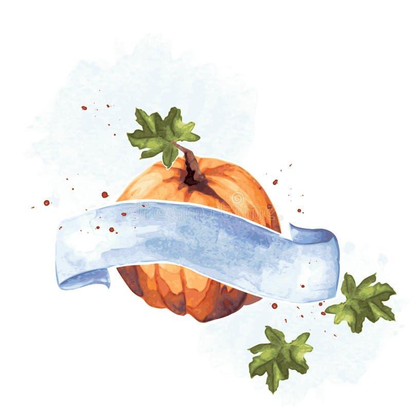 Ejemplo colorido de la calabaza de la acuarela stock de ilustración