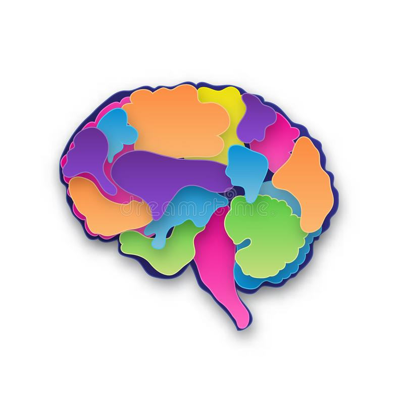 Ejemplo colorido del cerebro del vector ilustración del vector