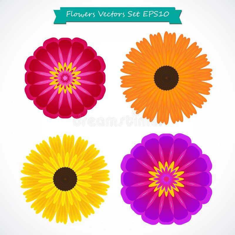 Ejemplo colorido del vectordel setde las flores ilustración del vector