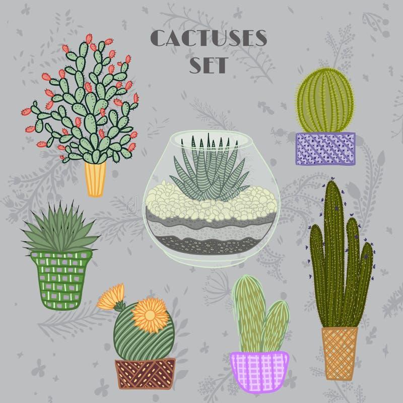 Ejemplo colorido plano de plantas y de cactus suculentos en potes y acuario libre illustration