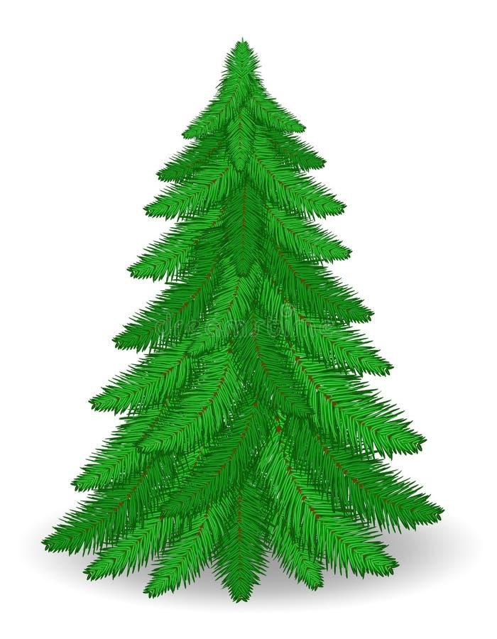 Ejemplo común del vector del árbol de navidad ilustración del vector