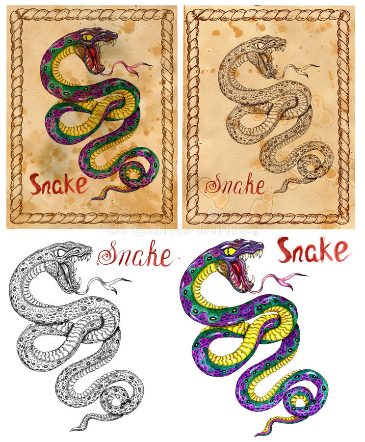 Ejemplo con el animal del zodiaco - serpiente libre illustration