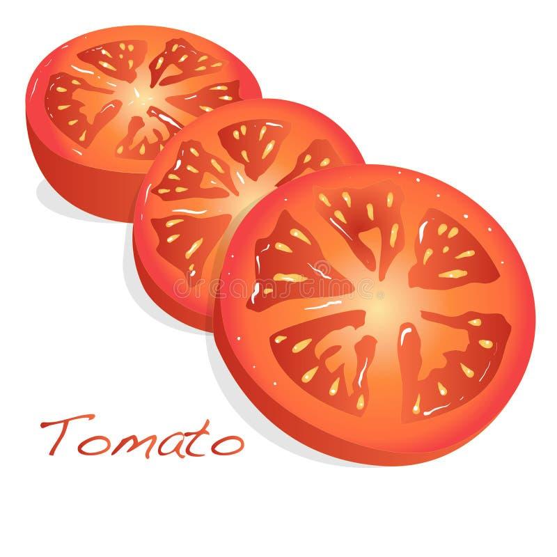 Ejemplo cortado tomate stock de ilustración