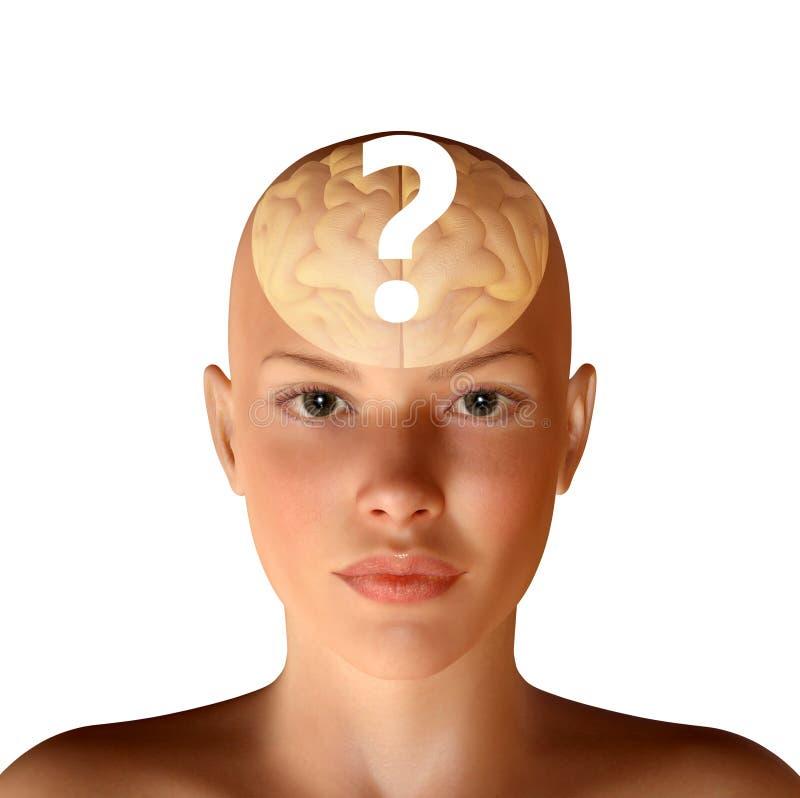 ejemplo 3d de la cabeza femenina con el cerebro y la pregunta libre illustration