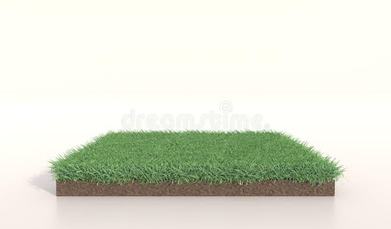 ejemplo 3D de la hierba verde cuadrada, tierra del suelo, césped Cuadrado de la hierba Representaci?n realista 3d imagenes de archivo