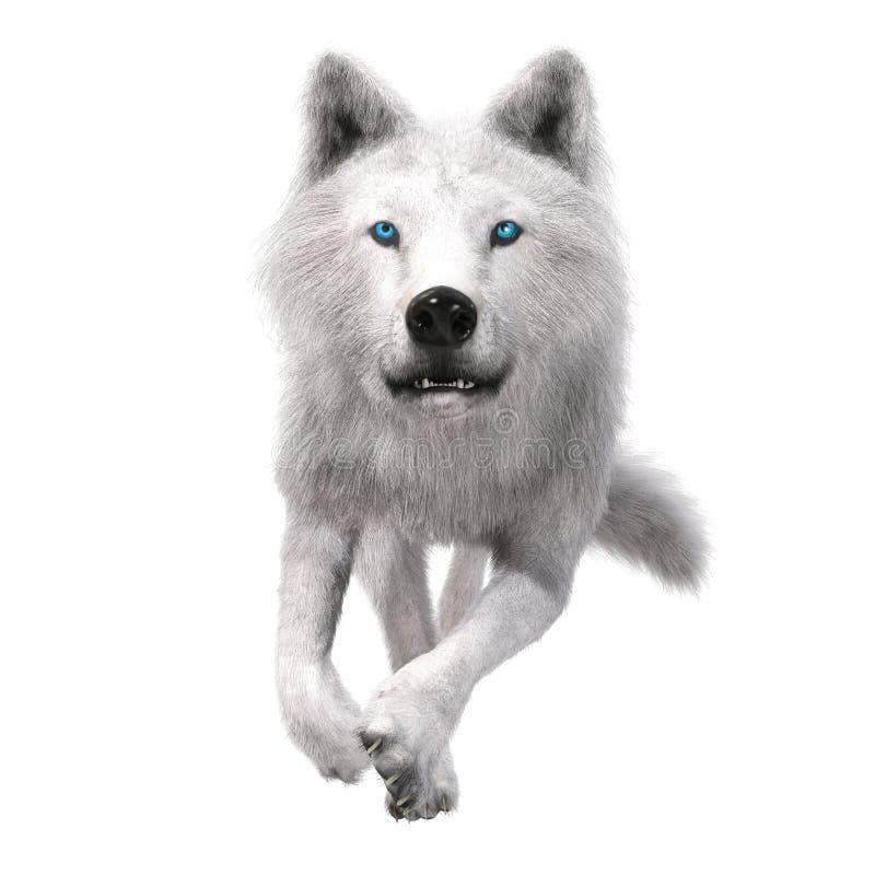 ejemplo 3D de un lobo ilustración del vector