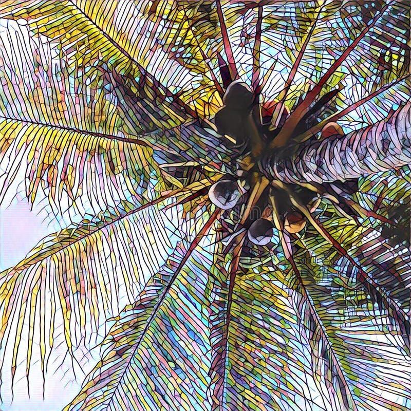 Ejemplo de Digitaces de la silueta de la corona de la palmera de los Cocos en el cielo libre illustration