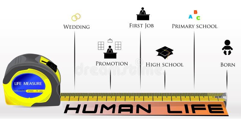 Ejemplo de Infographic que mide vida humana ilustración del vector