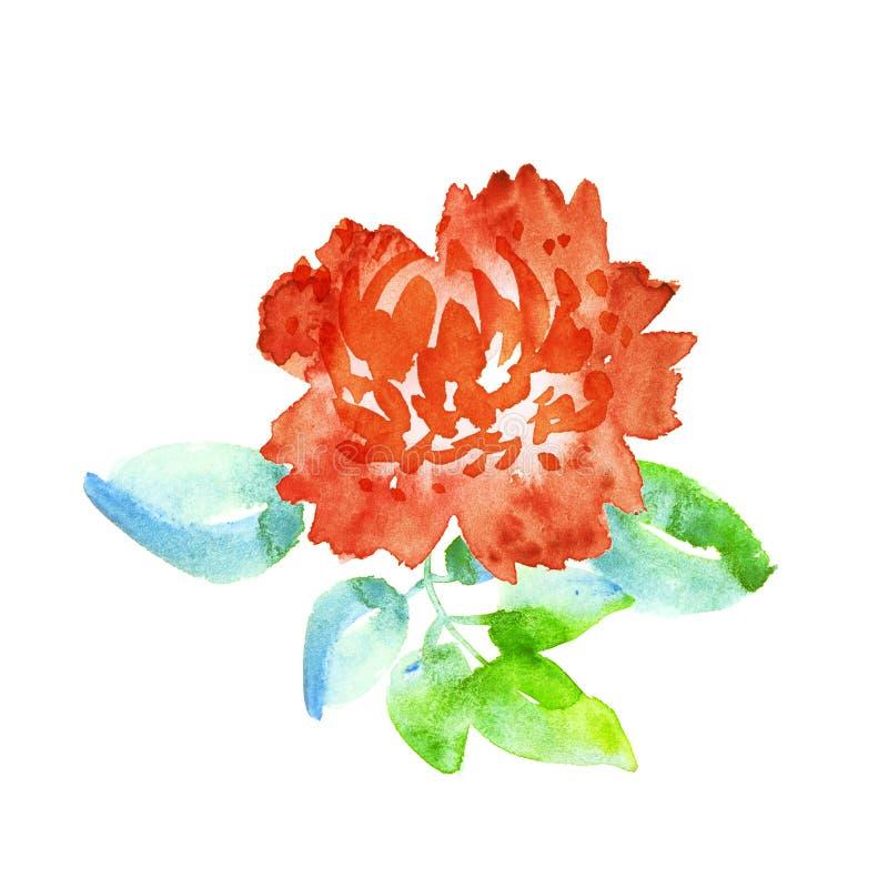 Ejemplo de la acuarela de la flor del clavel stock de ilustración
