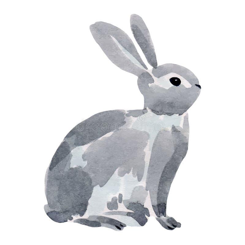 Ejemplo de la acuarela de un conejo stock de ilustración